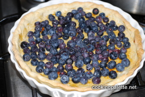 bluberry tart (10)