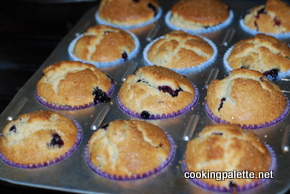 blueberry muffins no butter (12)