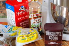 chocolate gelato (1)