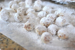 apricot coconut bonbons (8)