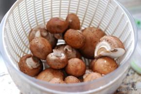 filo mushroom packets (1)