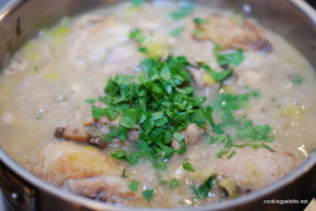 chicken leek and mushroom sauce (10)