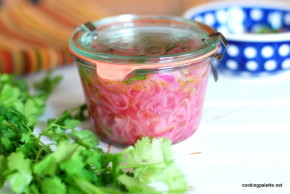 pickled red onion (21)