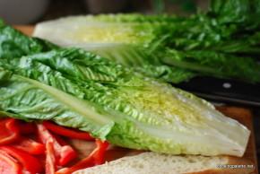 grilled salad (4)