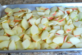 apple preserves (7)