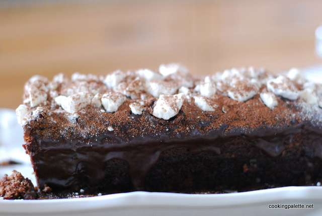 chocolate cake choc frosting (35)