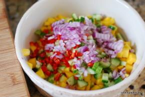 mahi mahi with mango-cucumber salsa (2)