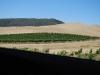 California00026